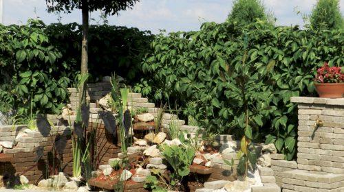 Leier Patio térkő és falazókő a kerben növényekkel