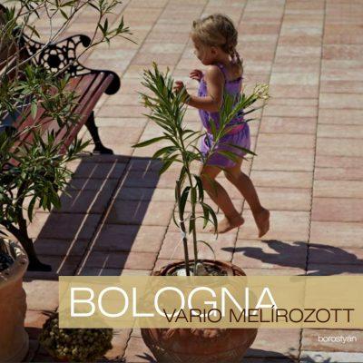 Bologna Vario Melírozott térkő növény és kislány