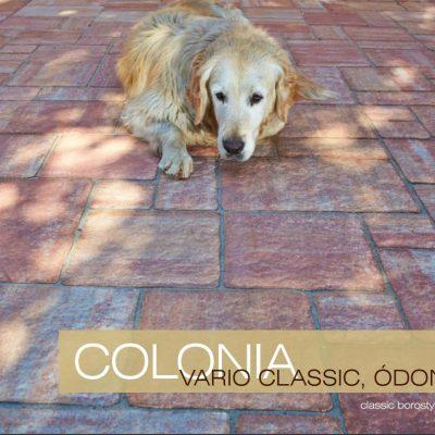 Colonia Vario Classic Ódon térkő, fekvő kutyával